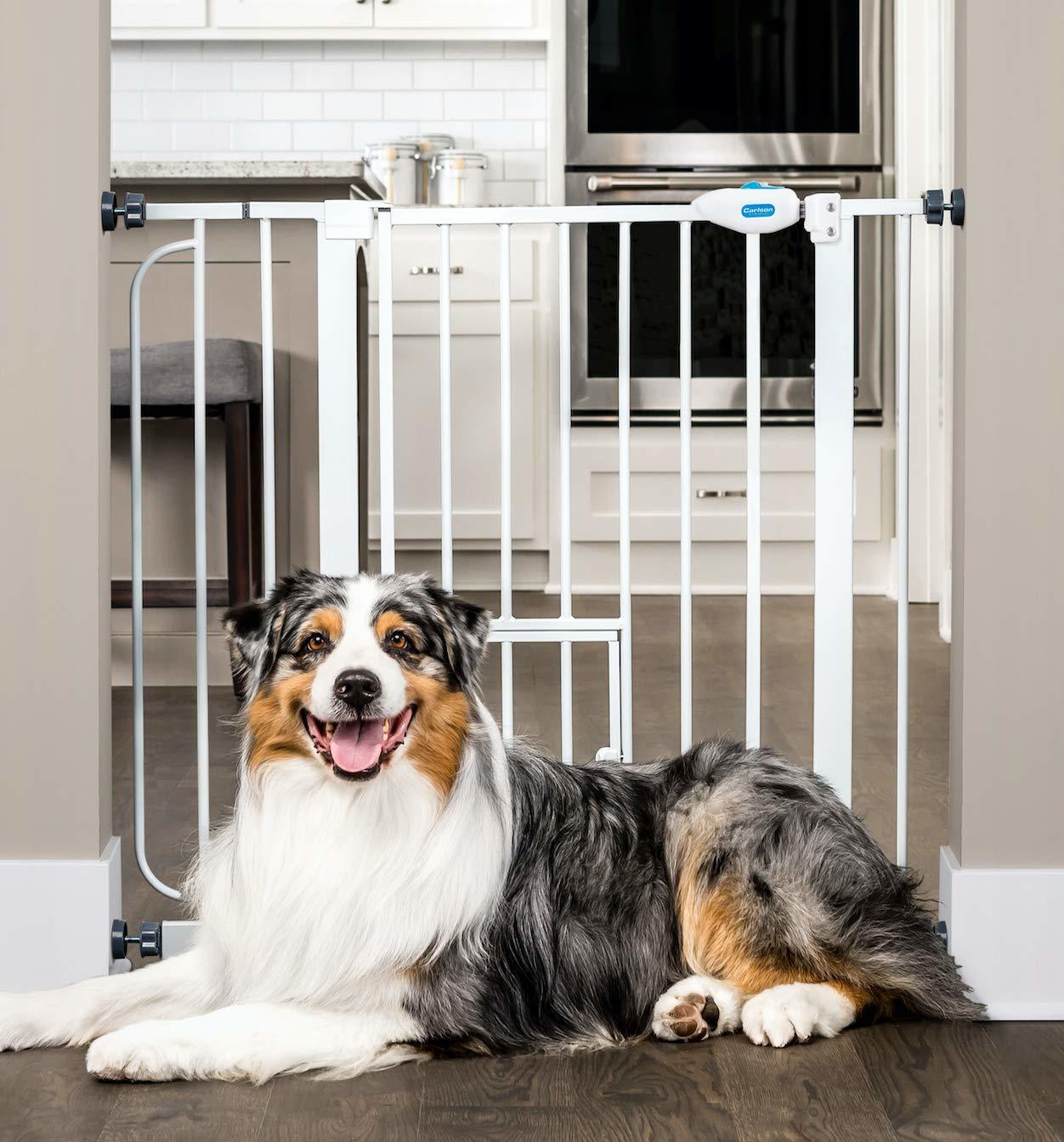 Carlson Extra Wide Walk Through Pet Gate with Small Pet Door Review