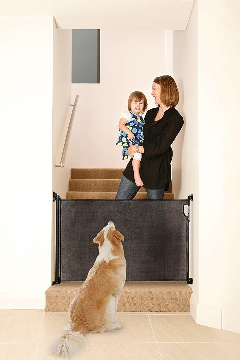 Dreambaby Retractable Gate Review